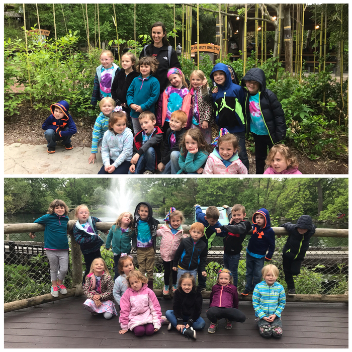 Mrs. Adams' class had a great day at the zoo