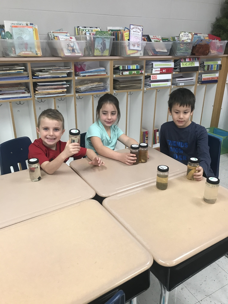 First graders observing animals specimens
